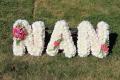 Nan letters