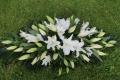 All white coffin tribute