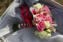 Pinks and ivory