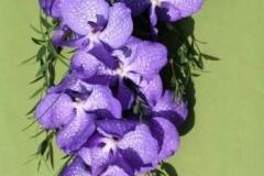 Stunning long blue orchid bouquet